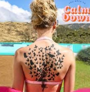 End of the Snake Era for Taylor Swift! 'You Need to Calm Down' Review