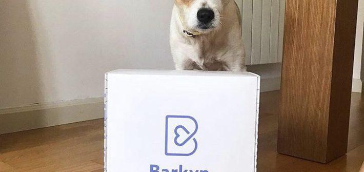 Bakynbox