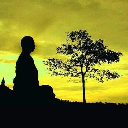 """Meditación zazen. Shikantaza, o """"estar simplemente sentado""""."""