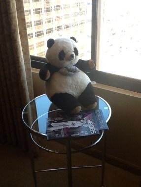 Croissant the Panda in Las Vegas