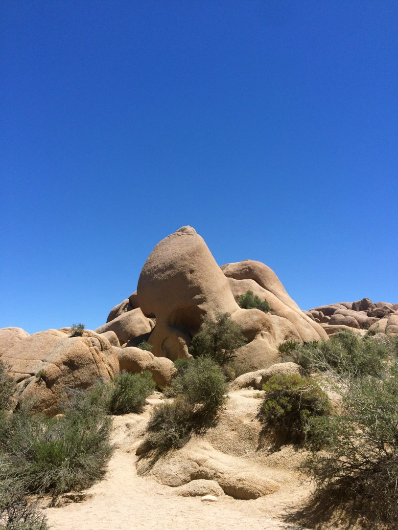 joshua-tree-park-skull-rock