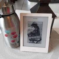 ¤ Chronique littéraire :  Le protocole de la crème anglaise T2 : Imprudence ¤
