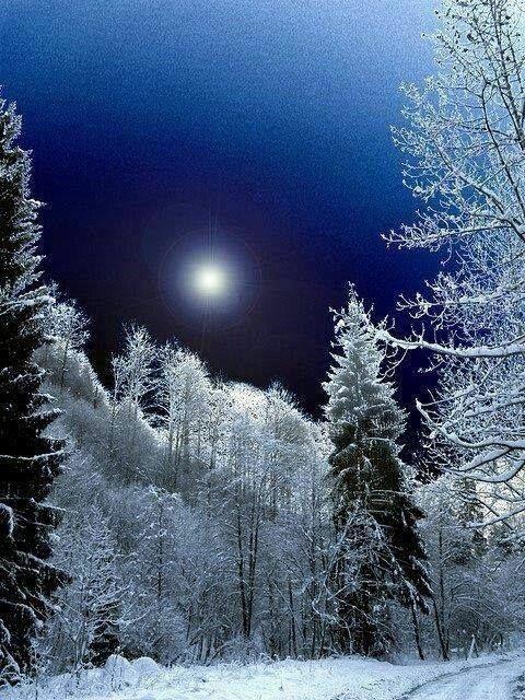 Однажды, во время снегопада