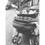 Der Kinderwagen-Cop ;)