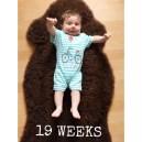 19 Wochen!