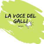Il giornale del Galli è on line