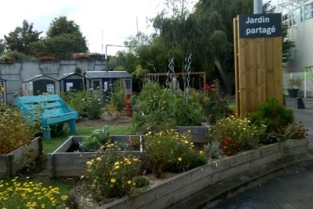 Jardin partagé Leroy Merlin
