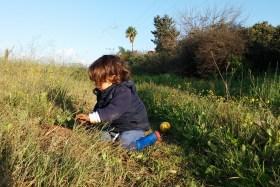 Les ateliers jardins pour les enfants