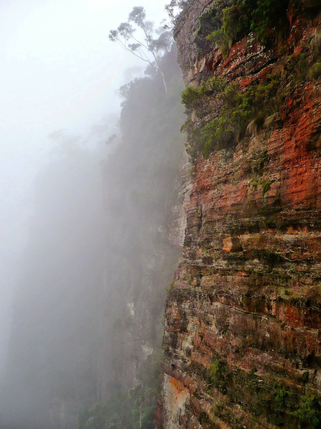 Blue Mountains, NSW.