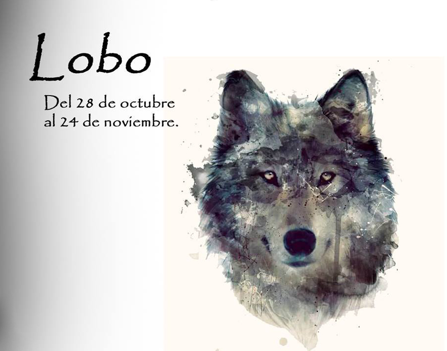 https://i2.wp.com/lavozdelmuro.net/wp-content/uploads/2015/10/horoscopo-celta-de-los-animales-12.jpg