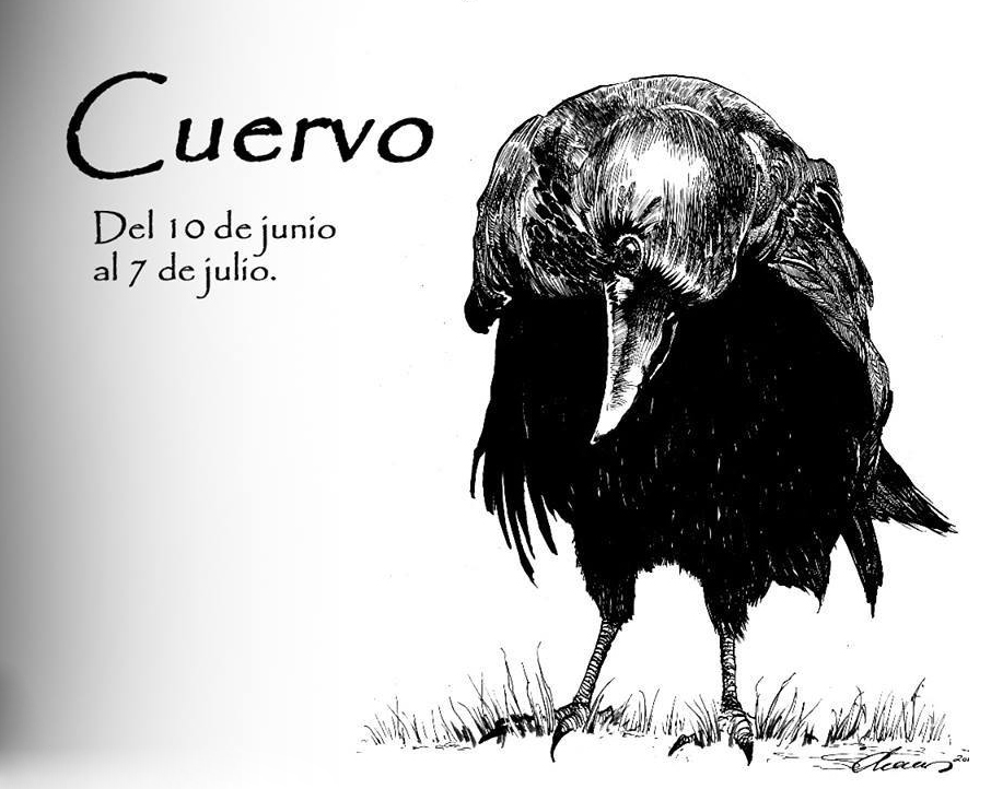 https://i2.wp.com/lavozdelmuro.net/wp-content/uploads/2015/10/horoscopo-celta-de-los-animales-7.jpg