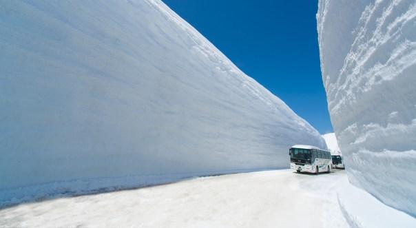 Autobus de lejos