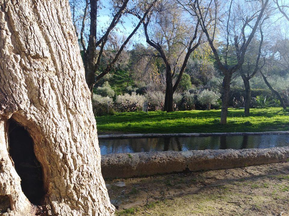 Fuente del Sol convoca un concurso fotográfico sobre el Parque de la Muela