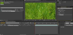 adobe after effect - композиция
