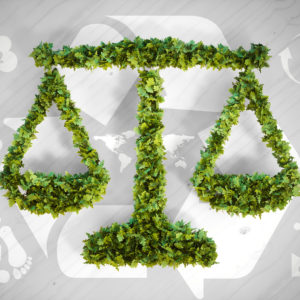 Are Environmental Laws a wallpaper to conceal Human Greed?
