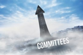 Law firm committees