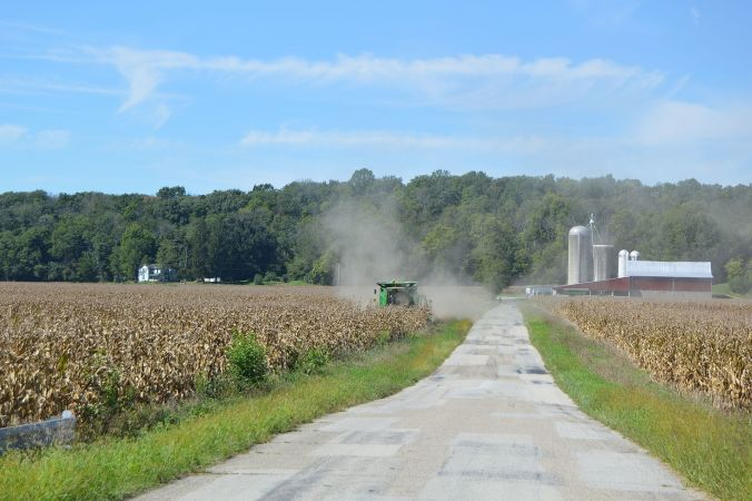 kinsey_road_corn_harvest