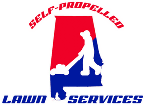 Self Propelled Website by Lawn Crack