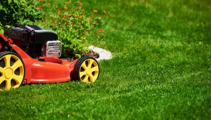 Best Riding Lawn Mowers for Zoysia Grass