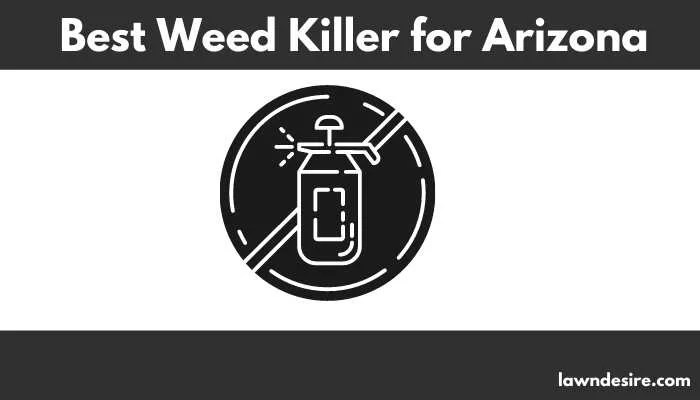Best Weed Killer for Arizona