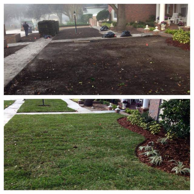 Landscape and Sod Replacement in Valrico