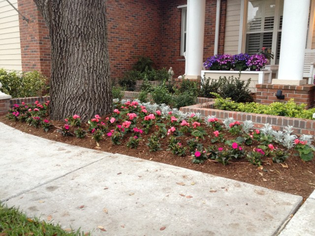 Seasonal Flower Bed