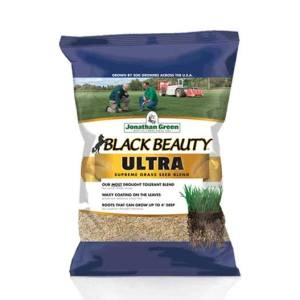 Black-Beauty-Ultra-Grass-Seed-Jonathan-Green