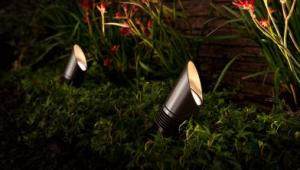 Outdoor-landscape-lighting-up_lights_0 Vero Beach, Sebastian, Fellsmere, FL
