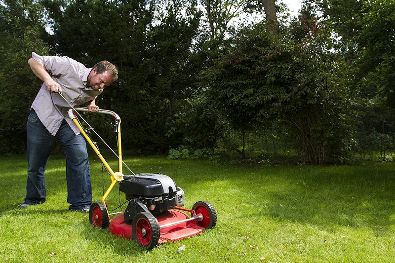 Best Self Propelled Lawn Mowers 2019 Reviews Amp Buying Guide