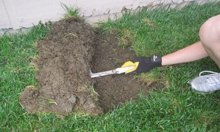 Why I Like the Japanese Hori Hori Digging Knife