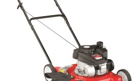 Best push gas lawn mower