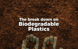 7 Things You Should Know About Biodegradable Plastics