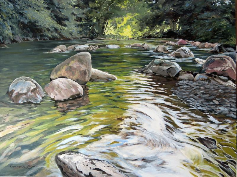 East Okement River by Lawrence Dyer
