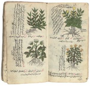 Ottoman empire medicinal journal