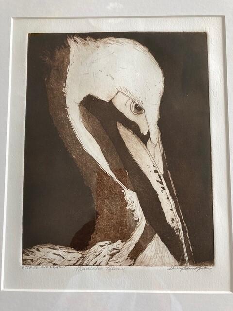"Sherry Adams Foster, ""Prudish Pelican"", etching and aquatint, 20 1/2x17 1/2, $165"
