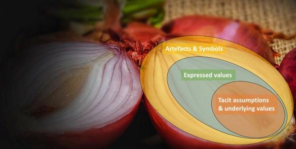 Schein's Onion Model