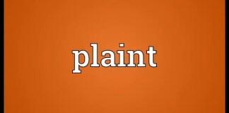 Plaint