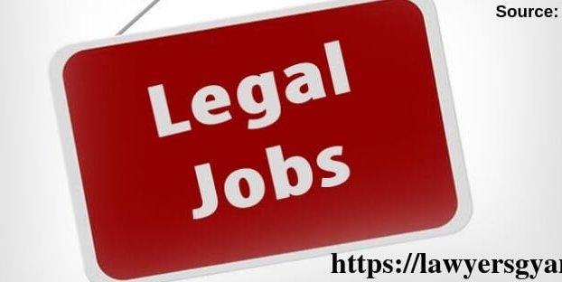 Junior Legal Associate