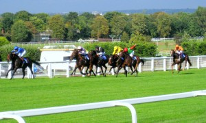 Quick And Simple Way To Pick A Losing Horse