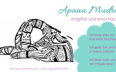 Apana Mudra zum Entgiften und Entschlacken