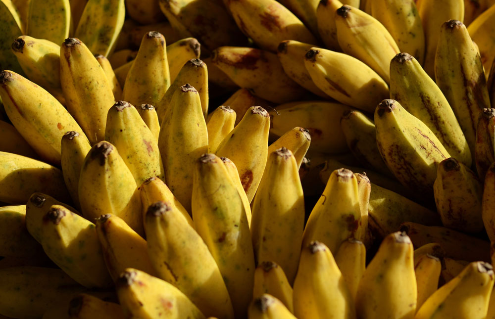 Banana-Bananan-Banana