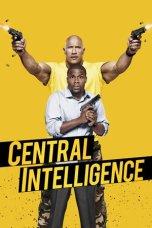 Central Intelligence (2016)