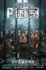 P Feng bao