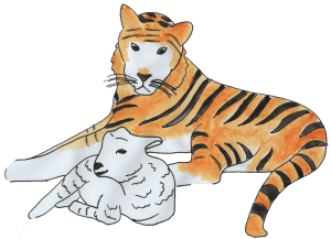 A Tiger and lamb lying down together