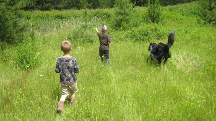 kids running through a field with a dog
