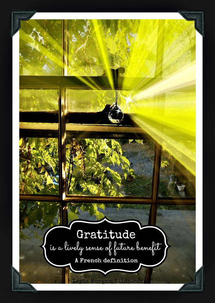 French gratitude quote
