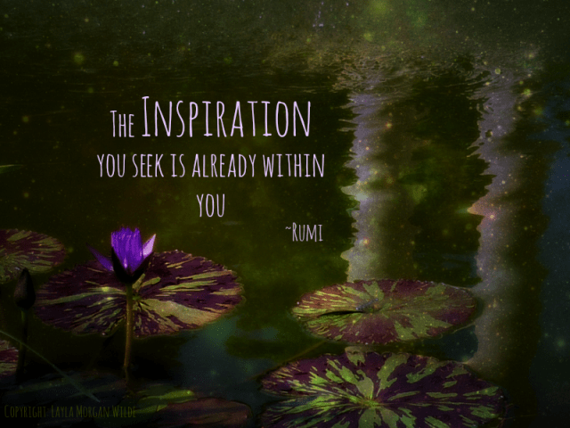 waterlilies pond quotes-rumi-inspiration