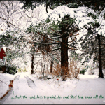 snow_road_quote_frost