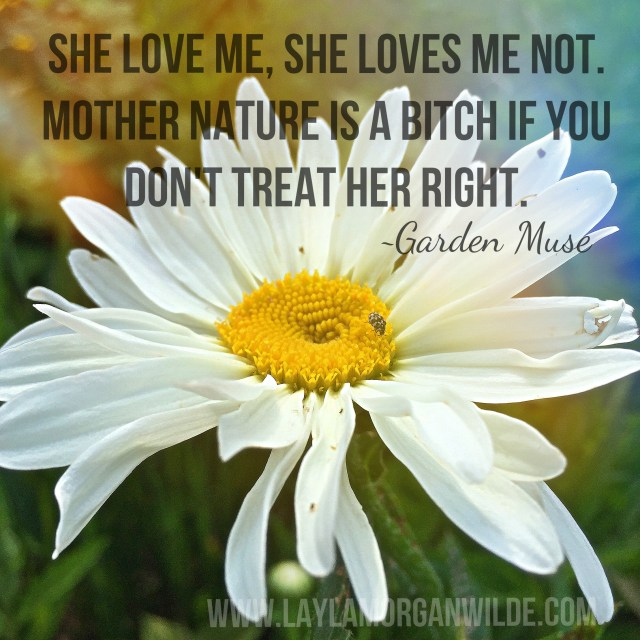 mother_nature_is_a_bitch