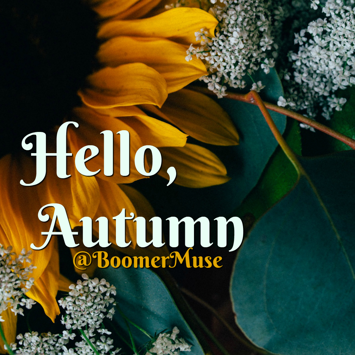 Bye Bye Summer. Hello Autumn. The Autumn Equinox, Otherwise Known As The  First Day Of Fall, Arrives On Friday, Sept. 22 In The Earthu0027s Northern  Hemisphere.